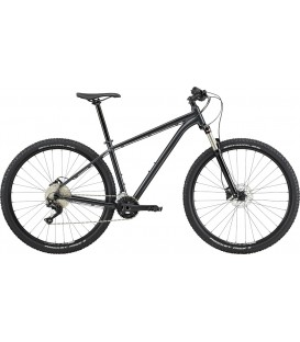 Bicicleta Cannondale Trail 5 2020 graphite